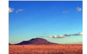 Otero Mesa is one of twelve unique landscapes being heralded by The Wilderness Society as �Too Wild to Drill� in a report out today.<br />Courtesy: New Mexico Wilderness Alliance<br />
