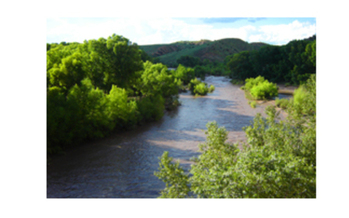 PHOTO: Gila River in summer. The water level of the Gila River, a tributary of the Colorado River, has New Mexicans concerned for the long-term health of the waterway. <br />Courtesy of: Dennis O�Keefe<br />