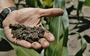 Thirty years ago, Missouri had the second highest erosion rate in the nation. The Department of Natural Resources says conservation practices save the soil. Photo courtesy of: DNR