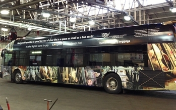 Photo: HSHS bus wrap ads publicizing gestation crate concerns in Washington, DC. Courtesy: HSUS