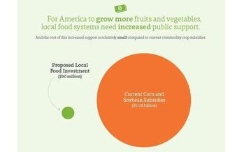 GRAPHIC Federal supports for farmers' markets can have a big impact at a tiny cost, according to the Union of Concerned Scientists. Courtesy of the UCS.