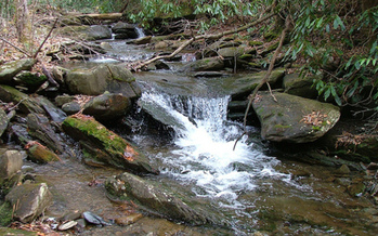 PHOTO: The Tennessee Wilderness Act seeks to permanently protect 20,000 acres of the Cherokee National Forest and add the first new wilderness area in Tennessee in more than a quarter-century. Photo credit: Chris M. Morris