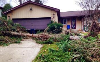 PHOTO: Thousands of homeowners are cleaning up after powerful storms ripped through the state earlier this week, but experts warn against rushing into repairs that sound too good to be true. Photo courtesy of Mona Shand.