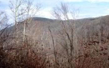 Photo: View of CTNC's newly acquired Humpback Mountain property. Courtesy: CTNC