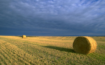 PHOTO: A compromise on the Farm Bill reached this week includes funding for programs that support rural development, jobs and farm income. Photo courtesy Bureau of Land Management.
