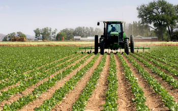 PHOTO: Oregon lawmakers are being asked to reinstate a crop-donation tax credit for farmers who grow extra produce for food banks and other nonprofit hunger-fighting groups. Photo credit: iStockphoto.com.