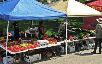 PHOTO: Demand for local, sustainably-grown food continues to surge in Illinois. Advocates say that should be a cue for state leaders to continue their support of local food systems. Photo credit: AcrylicArtist on morguefile.com.