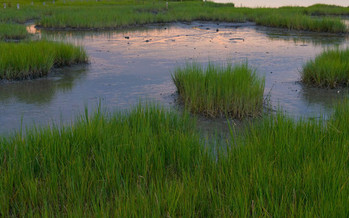 PHOTO: The EPA is proposing a rule to close loopholes in the Clean Water Act that some estimates say leave 60 percent of Ohio�s streams and millions of acres of wetlands at risk of unchecked pollution and development. Photo credit: Ohio EPA.