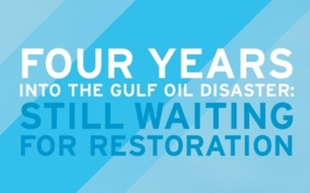 Photo: NWF report highlights the continued damage to 14 species living in the Gulf of Mexico from the 2010 Deepwater Horizon spill. Graphic courtesy National Wildlife Federation.